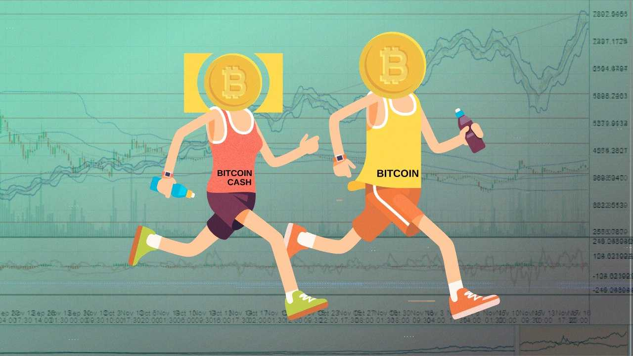Bitcoin Cash на грани мошенничества, по мнению Макса Кайзера