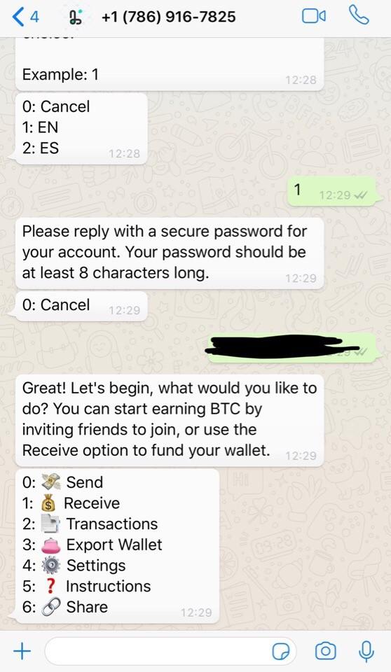 Криптовалютные транзакции теперь доступны через WhatsApp