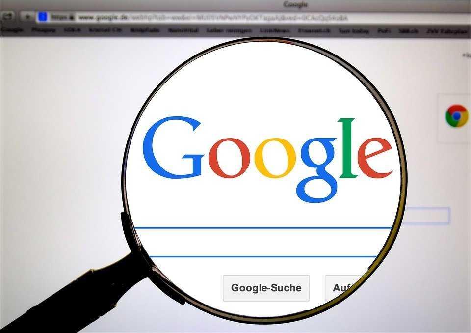 Криптовалюты вошли в топ поисковых запросов Google