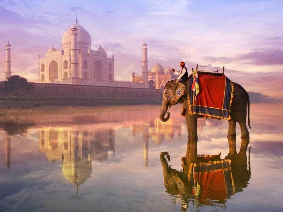 Индия: полиция арестовала еще четырех подозреваемых в предполагаемой крипто-афере на 14 миллионов долларов