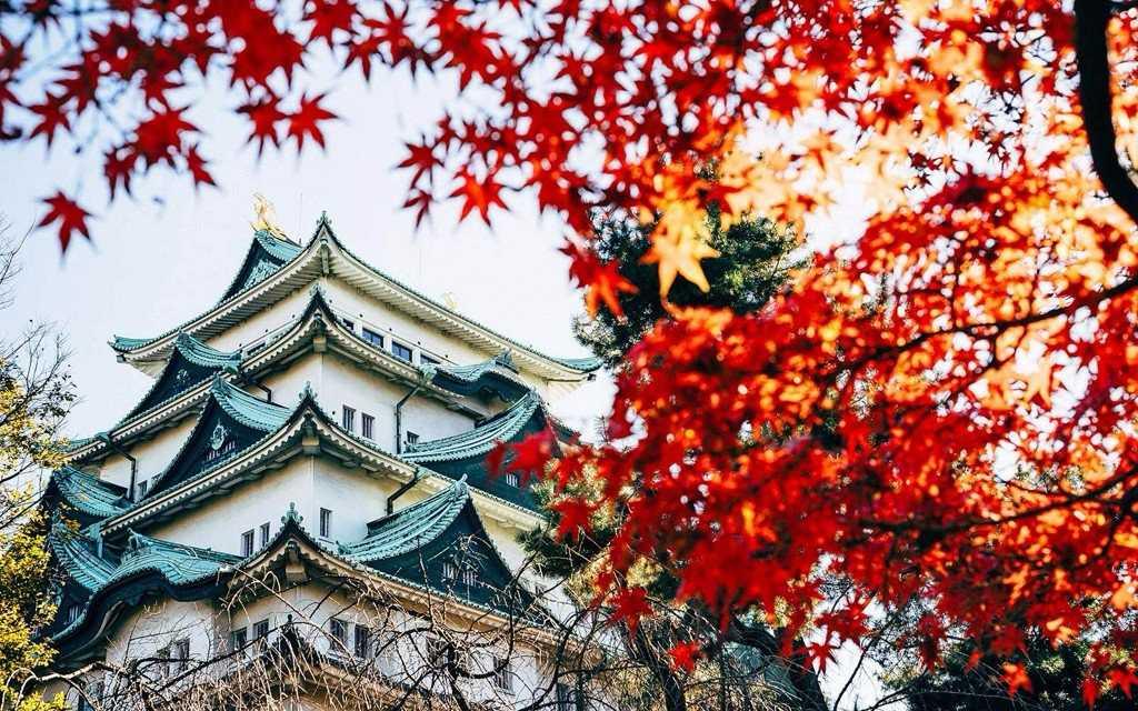 Японское правительство продолжит регулировать индустрию криптовалют